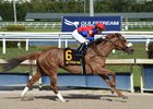 Swiss Skydiver wins the Gulfstream Park Oaks at Gulfstream Park