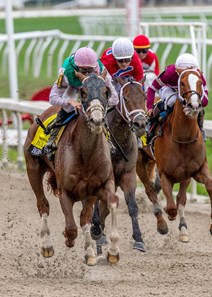 3/21/2020 - Bonny South with Florent Geroux aboard wins the $400,000 Grade II Fair Grounds Oaks at Fair Grounds.  Hodges Photography / Jan Brubaker