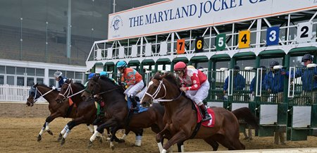 Horses break from the gate at Laurel Park
