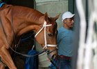 Monomoy Girl will make her return to the graded ranks July 11 at Belmont Park
