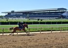 Racing will return to New York for the first time in 80 days June 3 at Belmont Park