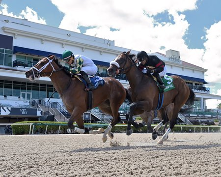 Double Crown defeats Green Light Go in the Roar Stakes at Gulfstream Park