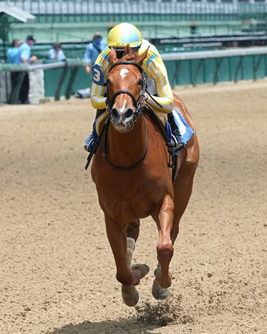 Casse Brings Duo With Star Potential to Schuylerville