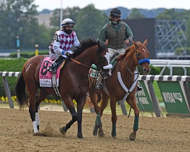 Tiz the Law with jockey Manny Franco in the post parade before he showed his dominance going on to the win in the 152nd running of the Belmont Stakes at Belmont Park on Belmont Stakes Day June 20, 2020