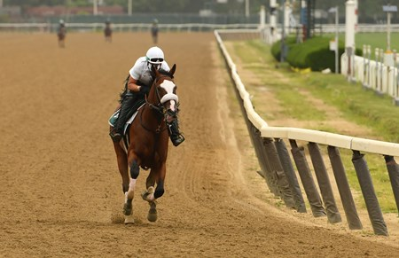 Belmont entrant Tiz the Law trained by Barclay Tagg stretches his legs on the main track at Belmont Park Thursday June 18, 2020 in Elmont, N.Y.