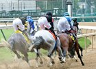 Racing at Churchill Downs this spring received strong support from bettors