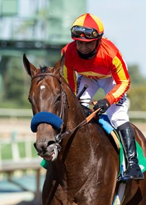 McKinzie after his win in the Triple Bend Stakes at Santa Anita Park