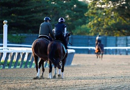 Tiz the Law heads to the main track Sunday June 14, 2020 in Elmont, N.Y. at the Belmont Race Course for his final speed work before the Belmont Stakes which will run next Saturday June 20th. Tiz the Law worked 50.42.   Photo by Skip Dickstein