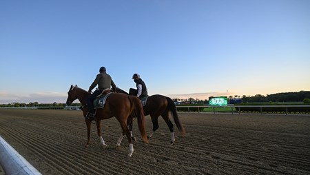 Trainer Barclay Tagg takes Tiz the Law out as the sun rises on Belmont Park June 14, 2020 in Elmont, N.Y. Photo by Skip Dickstein