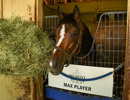 Max Player at Belmont Park