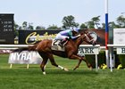 Sweet Melania wins the Wonder Again Stakes at Belmont Park
