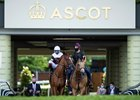 Sharing is ponied to the start of the Coronation Stakes at Ascot Racecourse