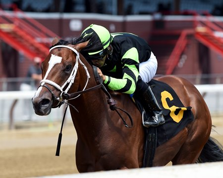 Effinity breaks his maiden at Saratoga Race Course