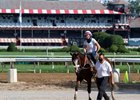 Tiz the Law returns from training July 25 at Saratoga Race Course