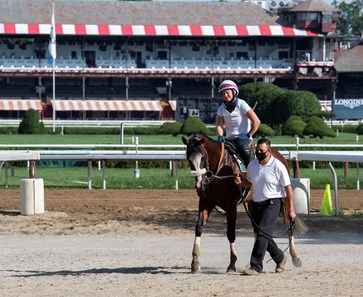 Tiz the Law keeps in shape with a breeze on the main track Saturday July 25, 2020 at the Saratoga Race Course in Saratoga Springs, N.Y.