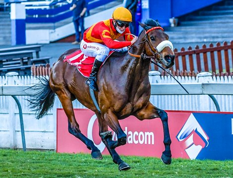 world sports betting horse racing results