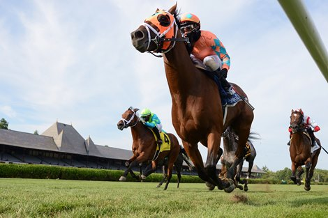 Somelikeithotbrown Proves the Best in Bernard Baruch