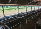 A view from the empty clubhouse July 15 at Saratoga Race Course
