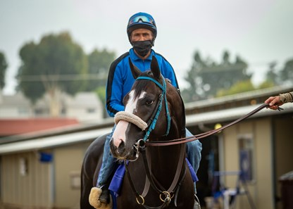 Honor A. P. before his workout at Del Mar Thoroughbred Club on July 12, 2020.