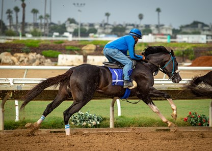 Honor A. P. working at Del Mar Thoroughbred Club on July 12, 2020.