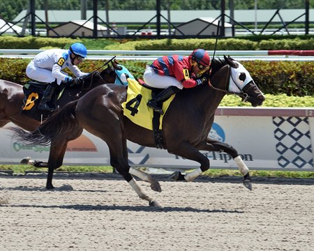 Savatiano breaks his maiden at Gulfstream Park