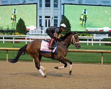 Caption: Shedaresthedevil training with King Guillermo on screen Kentucky Derby and Oaks training at Churchill Downs near Louisville, Ky., on Aug. 31, 2020 Churchill Downs in Louisville, KY.