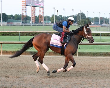 Shedaresthedevil - Gallop - Churchill Downs - 08-26-20