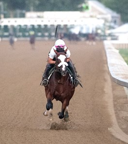 Tiz the Law with regular exerciser rider Heather Smullen aboard goes out for his final tuneup Saturday Aug. 1, 2020 for the Travers Stakes at the Saratoga Race Course in Saratoga Springs, N.Y.