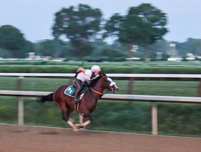 In the predawn hours where only the illumination from street lamps bathed the track Tiz the Law with exercise rider Heather Smullen aboard had one of his final preparatory works before the Kentucky Derby Sunday Aug.23, 2020 at the Saratoga Race Course in Saratoga Springs, N.Y. Photo by Skip Dickstein