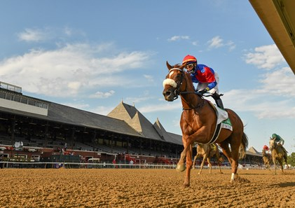 Swiss Skydiver with jockey Tyler Gafalione in the irons convincingly wins the 140th running of The Alabama Saturday Aug.15, 2020 at the Saratoga Race Course in Saratoga Springs, N.Y.  Photo by Skip Dickstein