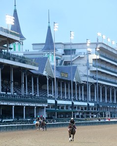 Shedaresthedevil - Gallop - Churchill Downs - 083120