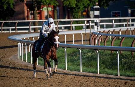Travers Stakes morning line favorite Tiz the Law passes the 1863 Club in the early morning at the Saratoga Race Course Wednesday Aug. 5, 2020  in Saratoga Springs, N.Y.  Photo by Skip Dickstein