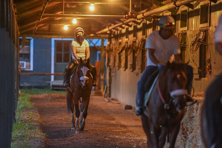 Tiz the Law with exercise rider Heather Smullen aboard cools out in the shed row after one of his final preparatory works before the Kentucky Derby Sunday Aug.23, 2020 at the Saratoga Race Course in Saratoga Springs, N.Y. Photo by Skip Dickstein