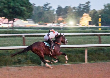 In the predawn hours where only the illumination from street lamps bathed the track Tiz the Law with exercise rider Heather Smullen aboard had one of his final preparatory works before the Kentucky Derby Sunday Aug.23, 2020 at the Saratoga Race Course in Saratoga Springs, N.Y. Photo by Skip Dickstein/Specia