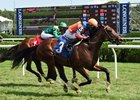 American Monarch defeats Secret Potion in an Aug. 8 maiden race at Saratoga Race Course