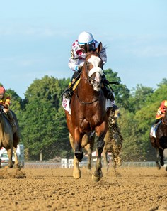 Tiz the Law with jockey Manny Franco leads the field to the finish line and wins convincingly the 151st running of The Travers presented by Runhappy at the Saratoga Race Course Saturday Aug.8, 2020 in Saratoga Springs, N.Y.  Photo by Skip Dickstein