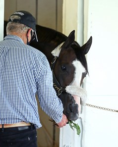 Honor A.P. - Arrival - Churchill Downs - 083120
