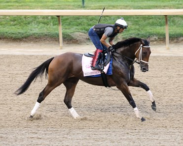 Shedaresthedevil - Gallop - Churchill Downs - 082720