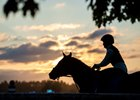 A horse gallops in the early morning at the Saratoga Race Course Wednesday Aug. 5, 2020  in Saratoga Springs, N.Y.  Photo by Skip Dickstein