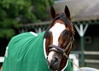 New York-bred Tiz the Law will grab plenty of attention Kentucky Derby Week