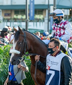 Tiz the Law at the Kentucky Derby (G1) at Churchill Downs, Louisville, KY on September 5, 2020.