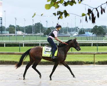 Storm the Court - Gallop - Churchill Downs - 090220