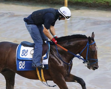 Mr. Big News Prepares for Preakness With Churchill Work