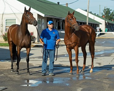 (L-R): Shedaresthedevil, Brad Cox, and Monomoy Girl The morning after Authentic wins the Kentucky Derby (G1) at Churchill Downs, Louisville, KY on September 5, 2020.