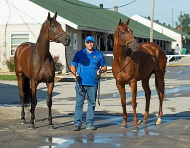 (L-R): Shedaresthedevil, Brad Cox, and Monomoy Girl. The morning after Authentic wins the Kentucky Derby (G1) at Churchill Downs, Louisville, KY on September 5, 2020.