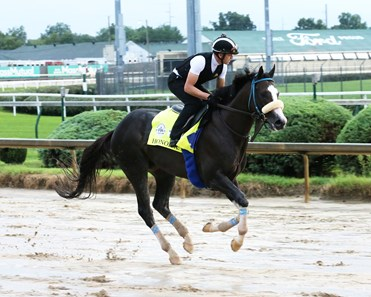 Honor A. P. - Gallop - Churchill Downs - 090220