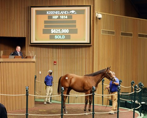 Into Mischief Colt Tops Keeneland's Fifth Session