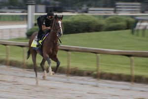 Kentucky Derby: Authentic Gallop Sept. 2