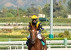 Astute wins maiden special weight October 12, 2020 at Santa Anita Park