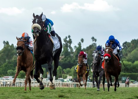 Maxim Rate Rolls Home to Win Goldikova Stakes